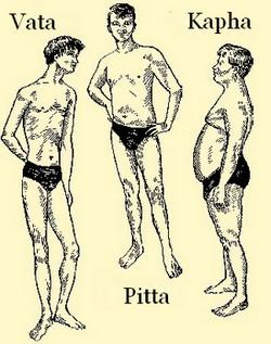 vata pitta kapha - nutrition based on body type