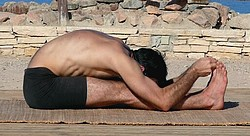 Paschimottanasana the seated forward bend pose