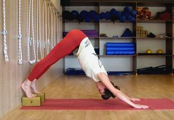 yoga poses with blocks - adho mukha svanasana